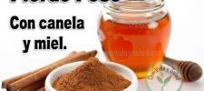 Pierde peso con canela y miel (hasta 4 kilos en una semana)